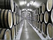 Продаю фабрику по производству вина в Испании