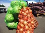 Сетка-мешок для овощей и сетка рукав,  агросетка,  овощная сетка оптом